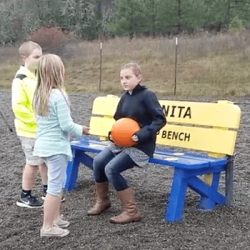 Past Project: Buddy Benches